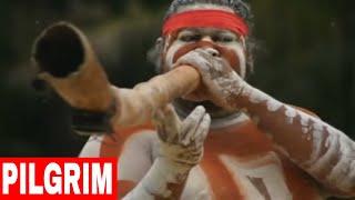 Australian aboriginals. Australian native music (didgeridoo). Australia. The didgeridoo (also known as a didjeridu) is a wind instrument developed by Indigen...