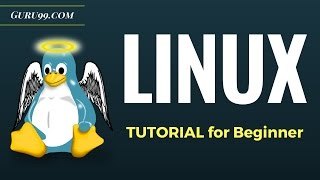 Video Linux Tutorial for Beginners: Introduction to Linux Operating System MP3, 3GP, MP4, WEBM, AVI, FLV Juni 2018