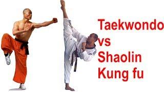 Video Taekwondo Olympic Gold Medalist vs Shaolin Monk MP3, 3GP, MP4, WEBM, AVI, FLV Maret 2019