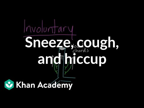 Sneeze, cough, and hiccup (video) | Khan Academy
