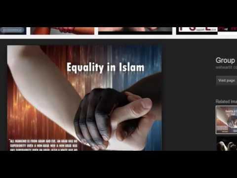 Equality in Islam Negro Rebellion 500000 black slave in one Islamic city