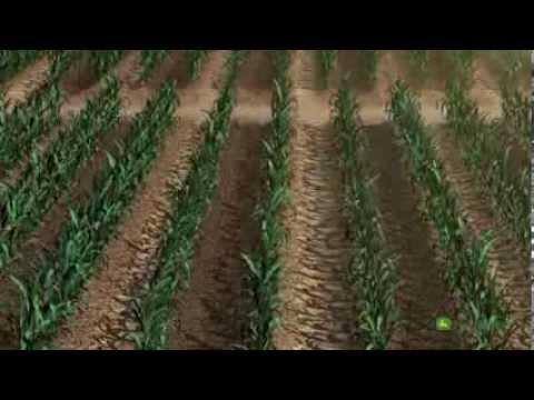 Sistema John Deere Water de riego para cultivo de maíz.