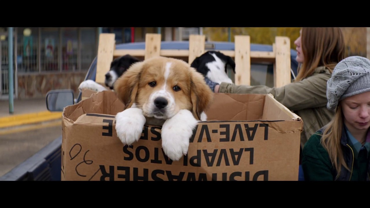 Every Dog Happens For A Reason in Lasse Hallström's Touching 'A Dog's Purpose' [Trailer] with Josh Gad & an Ensemble Cast