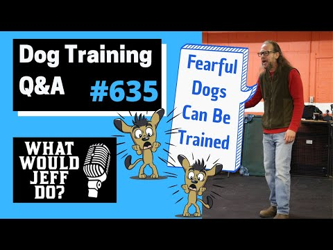 Dog Training - Fearful Dog Training - Training a Dog Out - What Would Jeff Do? Q&A  Ep.635 (2020)
