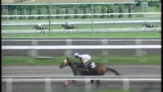 RACE 2 MISS BIANCA