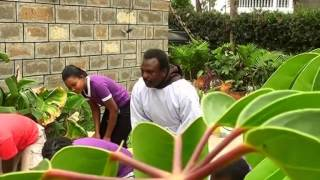 Video Br.Fr. Abedies (B.F.C) - Walevi (Final Video) MP3, 3GP, MP4, WEBM, AVI, FLV Agustus 2019