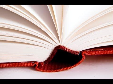 Что почитать из новых авторов?