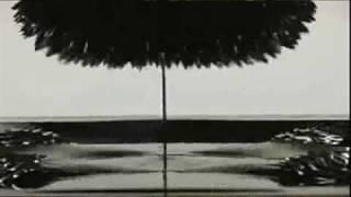 Tori Amos vs Noisia - Caught a Cold Vein (Aggro1 Mix)