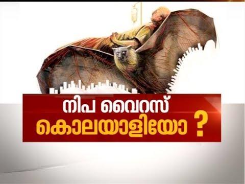 Nipah Virus puts Kerala in Panic Mode | News Hour 21 May 2018 (видео)