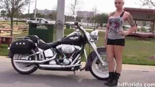 1. Used 2005 Harley Davidson Softail Deluxe Motorcycles for sale