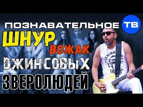 Шнур - вожак джинсовых зверолюдей (Познавательное ТВ Елена Гоголь) - DomaVideo.Ru