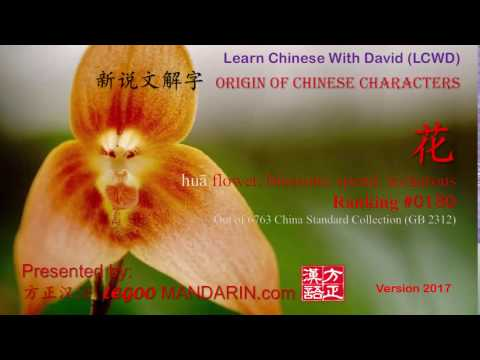 Origin of Chinese Characters - 0180 花 huā flower, blossom; spend, lecherous - P1 FREE
