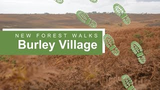Burley United Kingdom  city photos : New Forest walks: Burley village