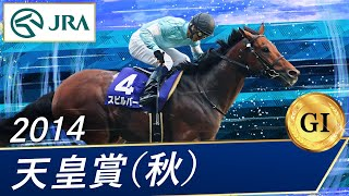 2014年天皇賞(秋)
