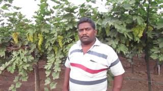 Solapur Shrinawas bhosle