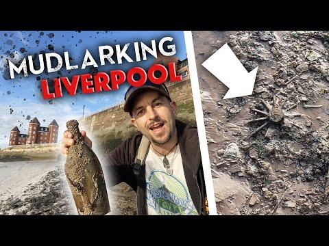 Mudlarking LIVERPOOL! What did I find? Plus Dinosaur footprints and Roman Forts!