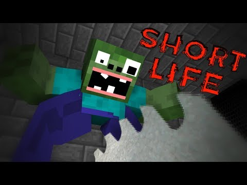 Monster School : SHORT LIFE CHALLENGE - Minecraft Animation