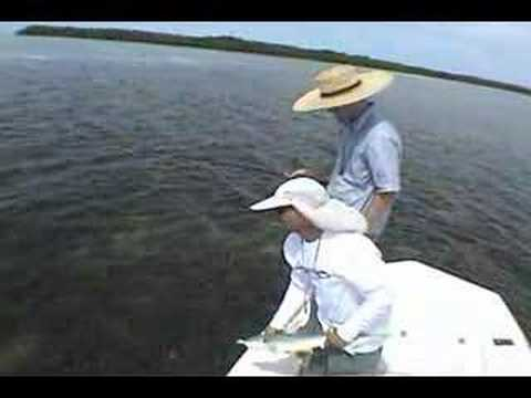 Salt water fly fishing for small sharks.