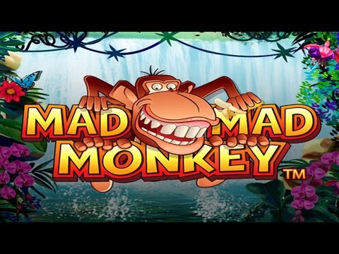 £20 or 20 minutes Ep 97 Mad Mad Monkey