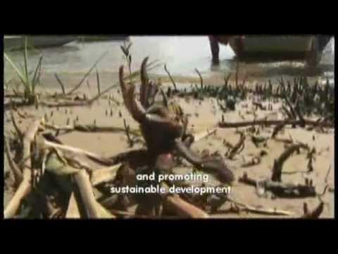 Institucional Shell Brasil - Promover