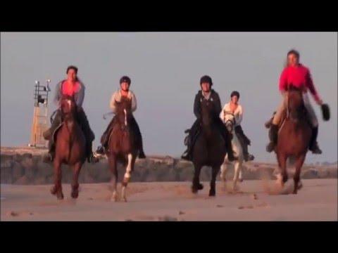 le Médoc à cheval