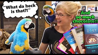 Cheyenne's Twin in our Mail?! (Fan Mail part 12!) by Snake Discovery