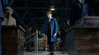 Nonton Fantastic Beasts And Where To Find Them   A New Hero Featurette  Hd  Film Subtitle Indonesia Streaming Movie Download