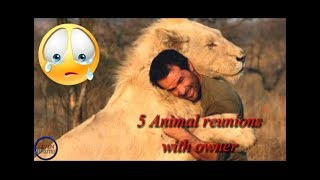Video 5 MOMENTS ANIMAL REUNIONS WITH THE OWNER MP3, 3GP, MP4, WEBM, AVI, FLV Juni 2019
