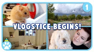 Vlogstice Day 1: When Nature Attacks! 😳🌩 by ErinsAnimals