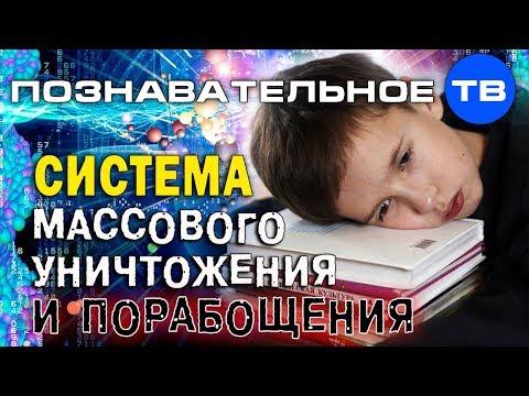 Система массового уничтожения и порабощения (Познавательное ТВ Владимир Базарный) - DomaVideo.Ru
