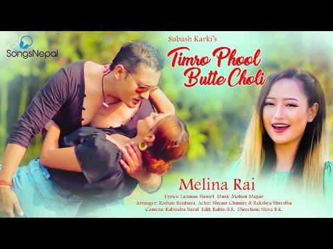 (Timro Phool Butte Choli || New Nepali Adhunik Song 2074 / 2017 ...4 min, 47 sec.)