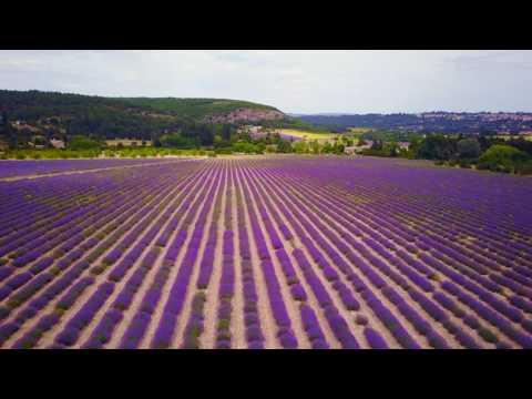 Meglátni és szerelembe esni, avagy Provence valóban a szívekhez szól