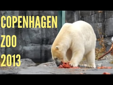 Zoo Denmark - Life in Denmark: Copenhagen Zoo. Recorded on 8/8/2013.
