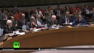 Компромисс найден: Совбез ООН согласовал текст резолюции по Сирии