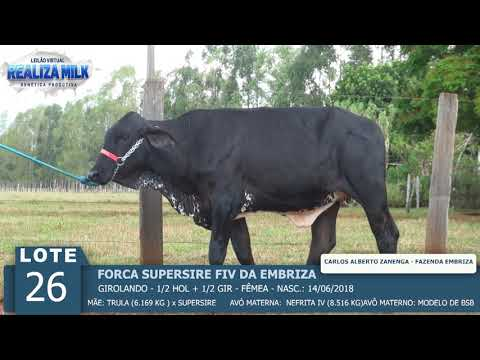 LOTE 26 - FORCA SUPERSIRE FIV -