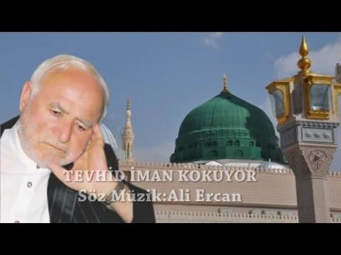 Ali Ercan – Tevhid İman Kokuyor Sözleri