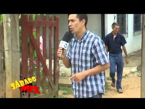 Abelhas Nativa Tubí - Wilson Melo -Barra do Corda
