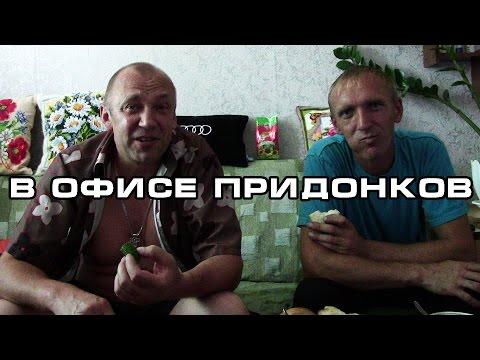 В офисе Придонков (видео)
