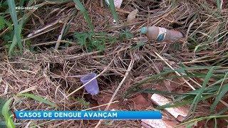 Casos de dengue aumentam mesmo no inverno em Marília