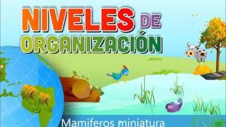 Este video es para un trabajo en la ucsur Integrantes 1: jeanpiere moquillazA flores 2: ramos chanca mileny 3: lino molina luz 4:...