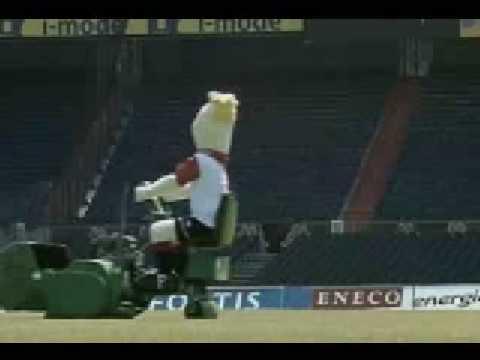 Mascot - Amstel