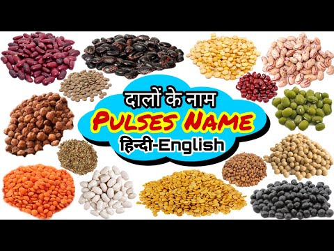 Pulses Name in English and Hindi / सभी दालों / #Pulses #Lentils / Gram / Pea / Beans / Legume #Names