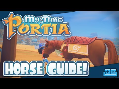 MY TIME AT PORTIA | HORSE GUIDE!