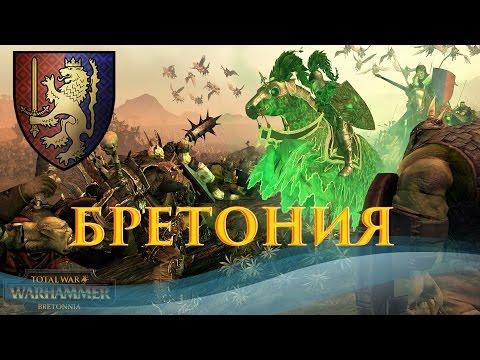 Total War: Warhammer - Смотрим Бретонию