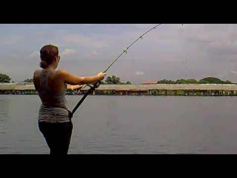 Pesca extrema bung samran lago tailandia 2