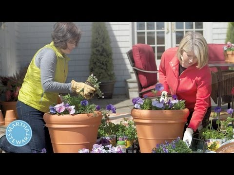 ASK MARTHA Container Gardening – Home How-To Series – Martha Stewart