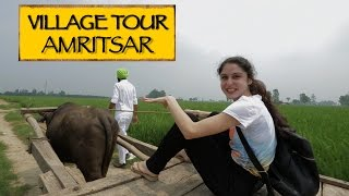 Amritsar India  City pictures : GottaDo || Village Tour || Amritsar