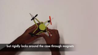 Insect-Inspired Mechanical Resilience for Multicopters