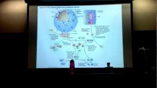 Dr. CY's Microbiology Chapter 15 Lecture Part 1-B