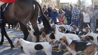 Was in Middleburg today for their annual Christmas celebration.  We came to see the dogs come down the main strip - Washington Street.  I didn't expect to take any video but the sound of the horses clopping was so cool I took some video and thought I'd share.